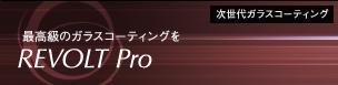campain_revolt_pro.jpg